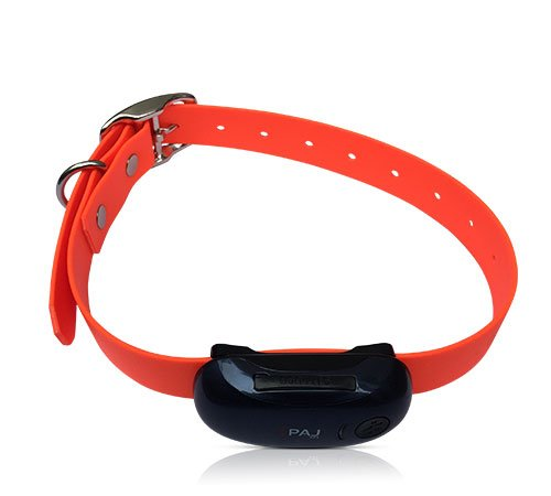 GPS-Tracker-fuer-Haustiere