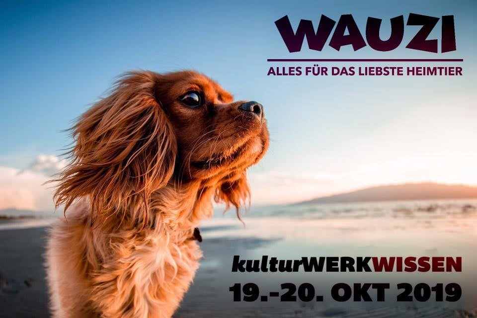 Blog; Tiermesse Wauzi