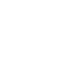dog - Karibu