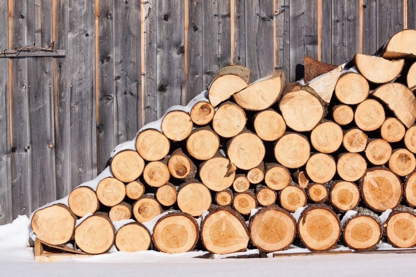 bild anwendungsgebiet gps tracker holz - Von Wildtier bis Diebstahl - so schützen Sie Ihre Holzbestände