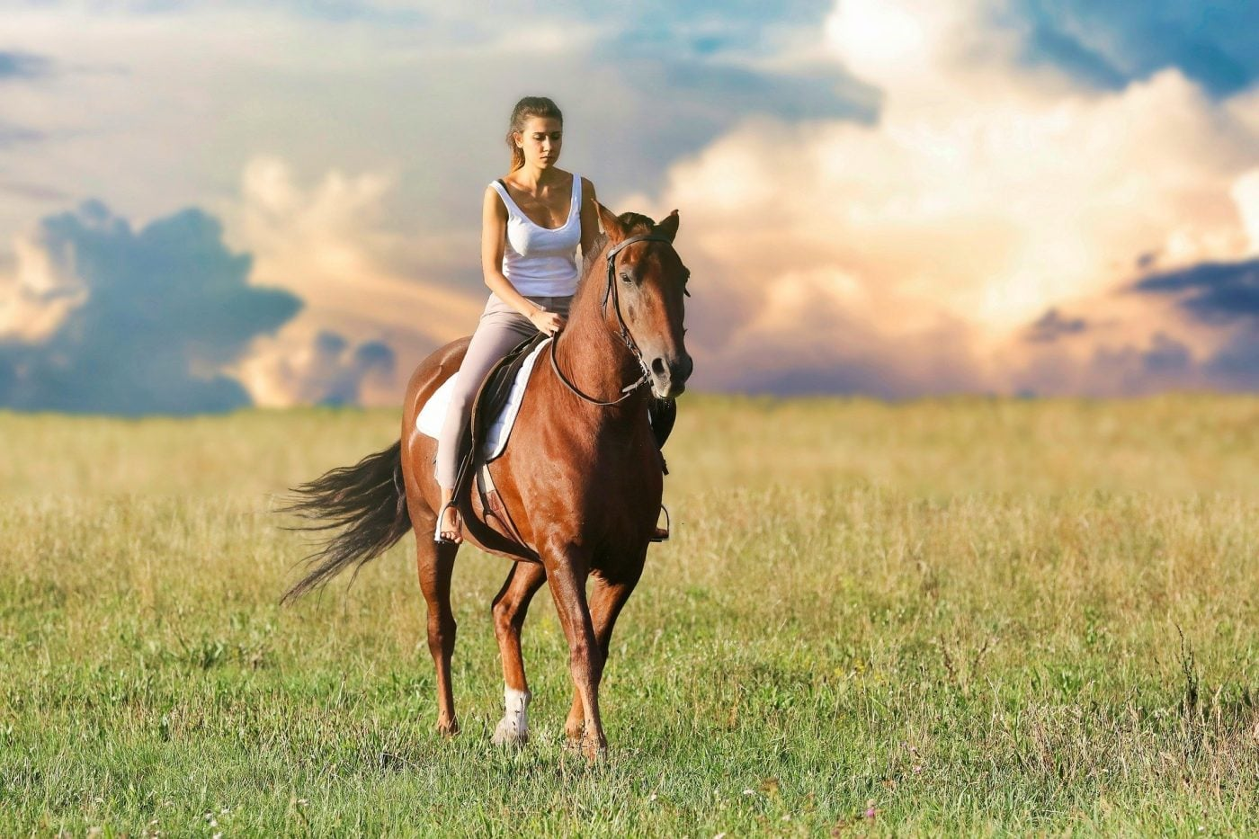 bild anwendungsgebiet ausritte gps tracker pferd 1400x933 - AG GPS Tracker für Pferde