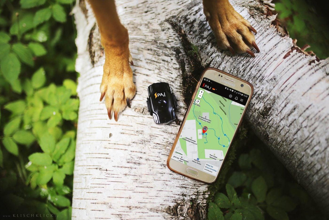 bild anwendungsgebiet gps tracker hund handy app pet finder 1400x934 - AG GPS Tracker für Hunde